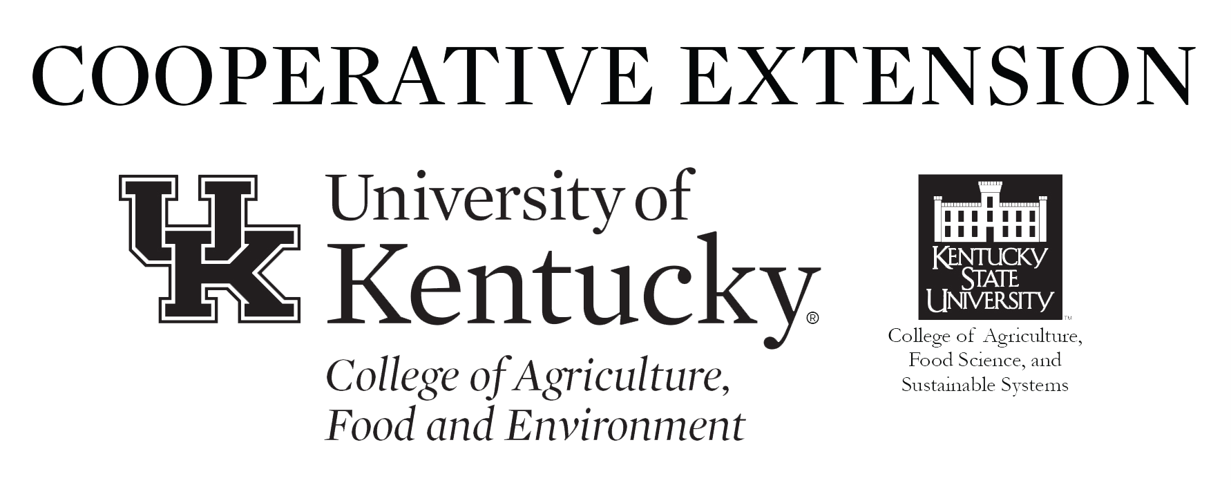 ky extension